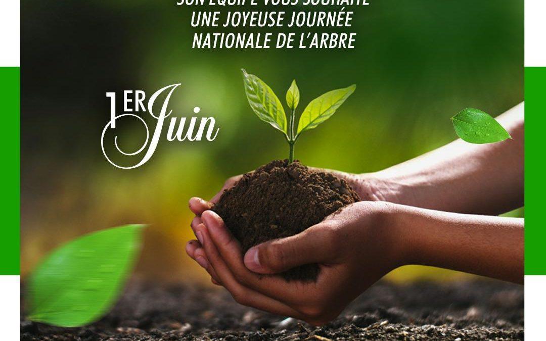 JOURNEE NATIONALE DE L'ARBRE